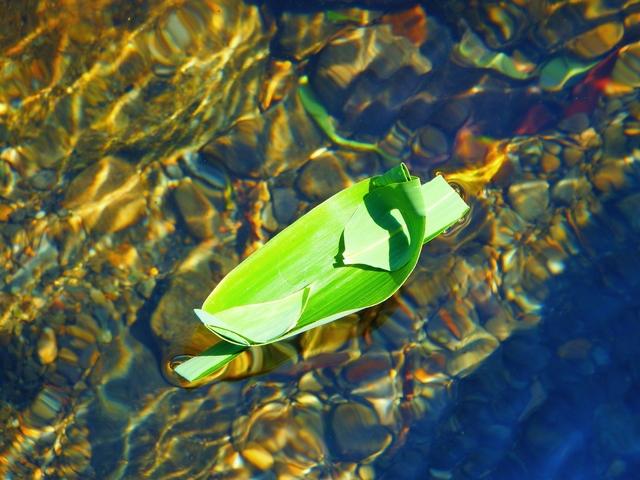 笹舟の作り方