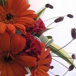 敬老の日のプレゼントに花を。素敵な花束をおばあちゃんに渡したい!
