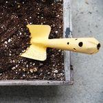 プランターの古い土の簡単な再生方法。リサイクル材の選び方