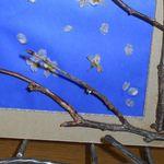 桜の花の押し花の作り方。桜の枝の工作を飾る