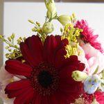 母の日の手作り花束を自分で作る!安い花でもかわいくできる方法