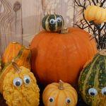 おもちゃかぼちゃのおばけ