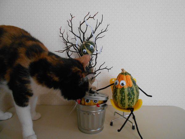 おもちゃかぼちゃと猫2