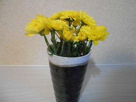 菊の花をコップにさしておく