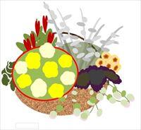 ペチュニアとカラーリーフやお花の寄せ植えみたいなハンギング