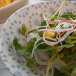 豆苗のサラダレシピ