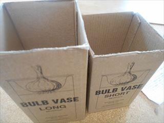 コルチカム用の箱