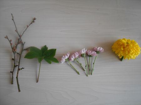 菊と葉物を切る
