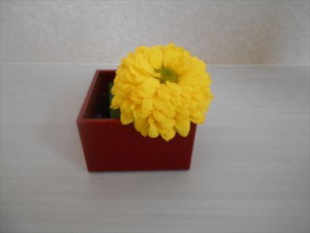 菊の花を挿す