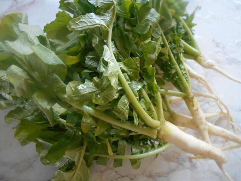 大根のつまみ菜