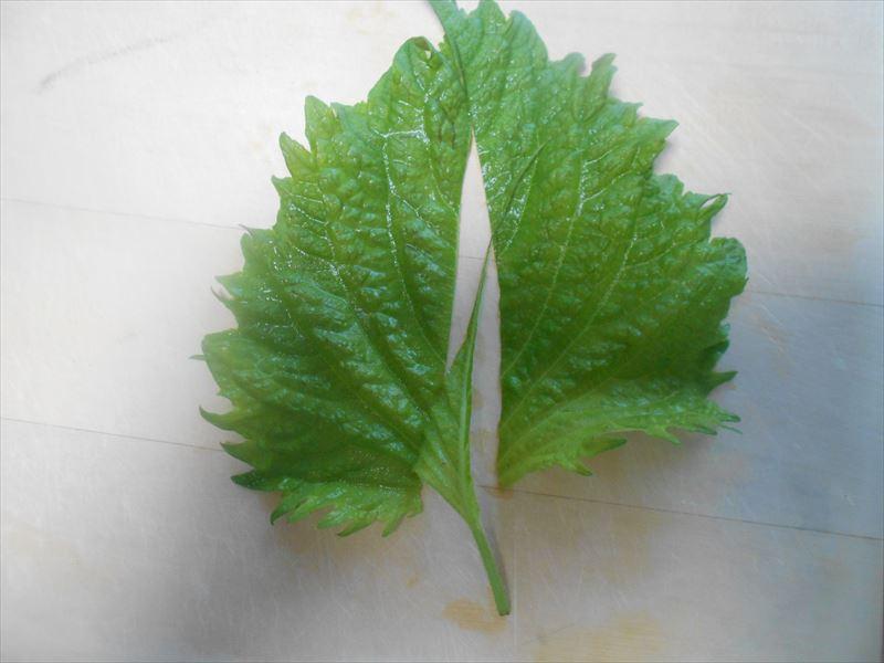 シソの葉を半分に切る